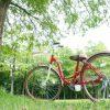 自転車高価買取のポイント
